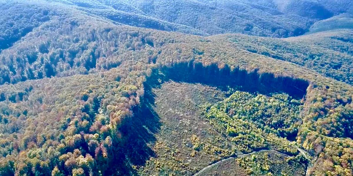 Drone video leads to illegal logging investigation in Romanian National Park