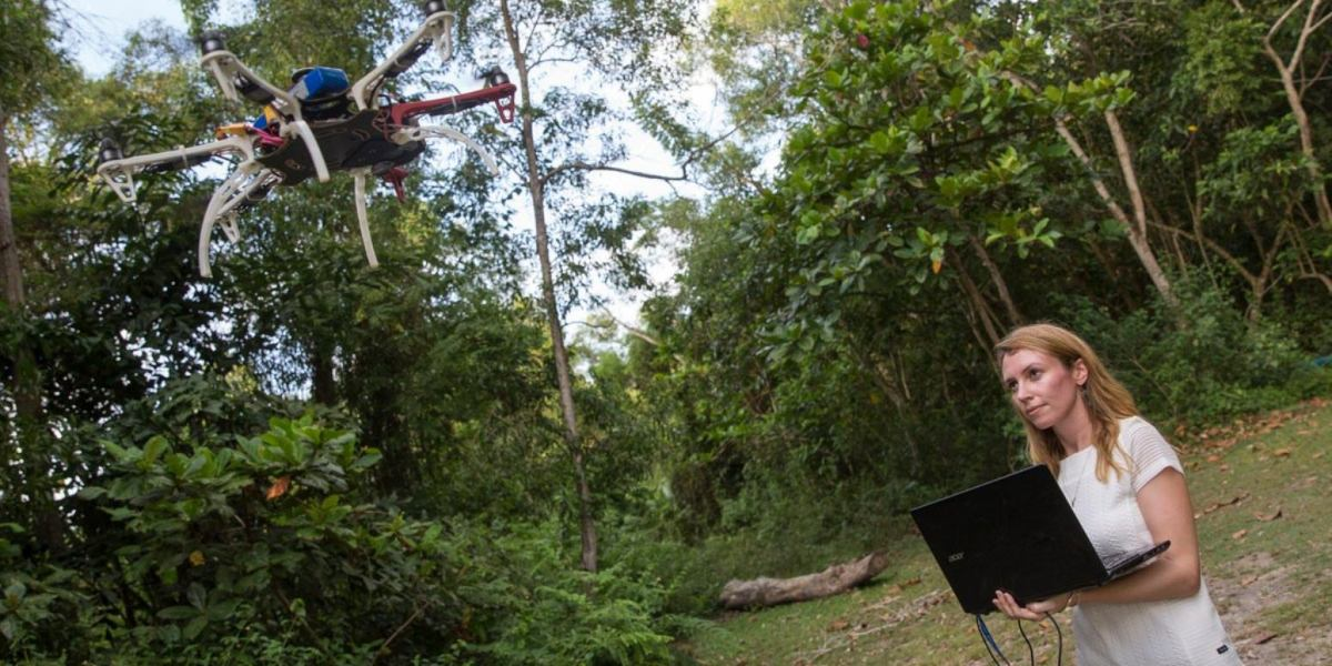 Drones are an integral part in fight against deadly malaria spread by monkeys in Malaysia