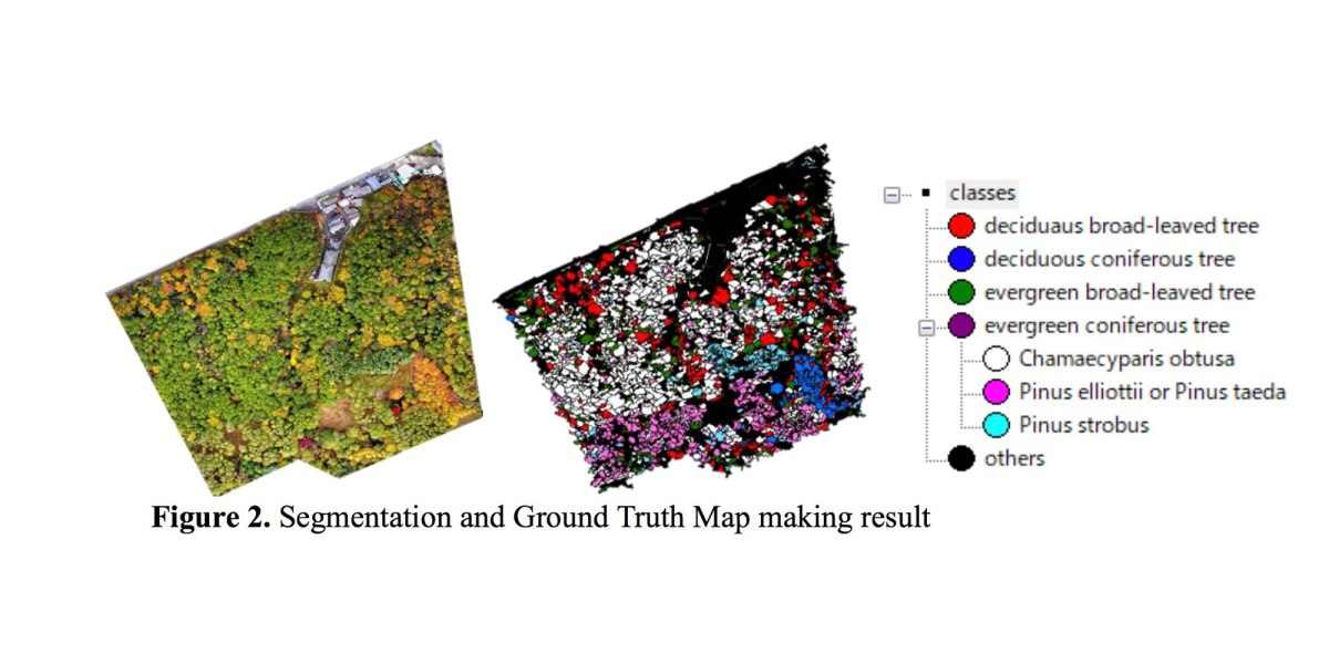 Researchers use Phantom 4 and AI to identify tree species in Japanese forest