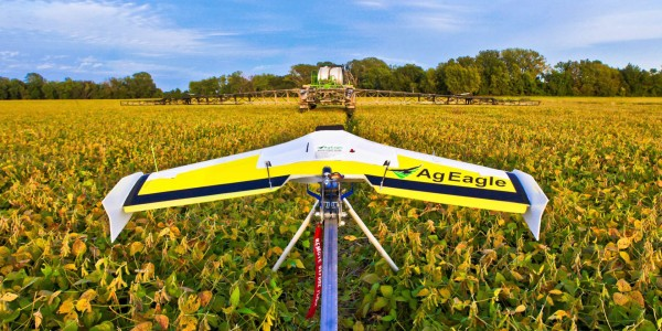 drones harmful insects