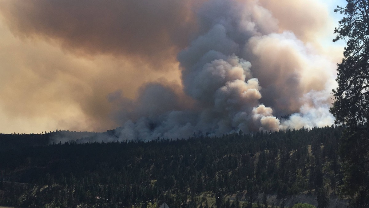Drone spotted above B.C. Interior wildfire causes firefighting aircraft to divert