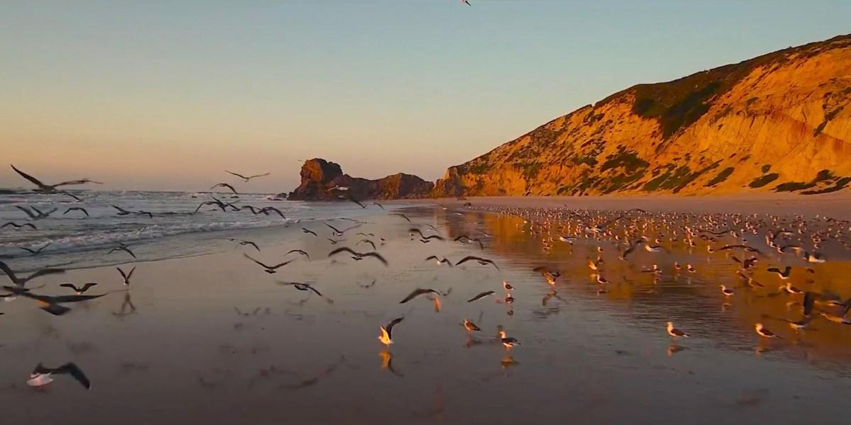 DroneRise - Yuneec Typhoon H Pro shows beautiful coast line Portugal