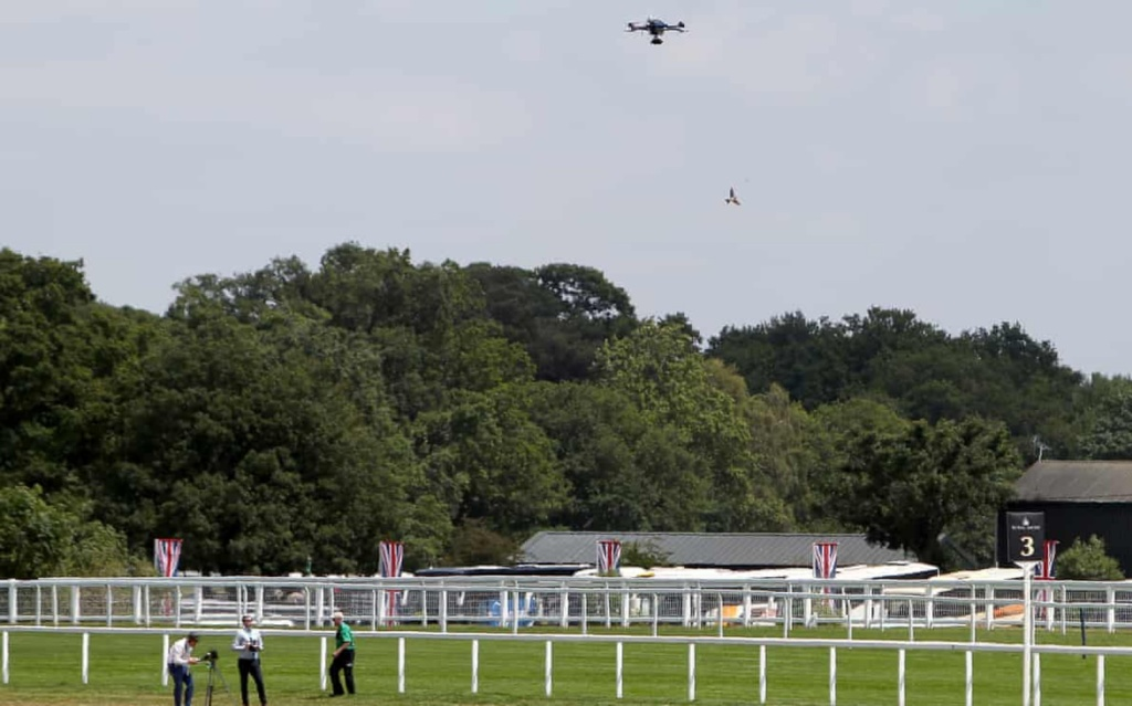 British racecourses want to ban drones during horse races
