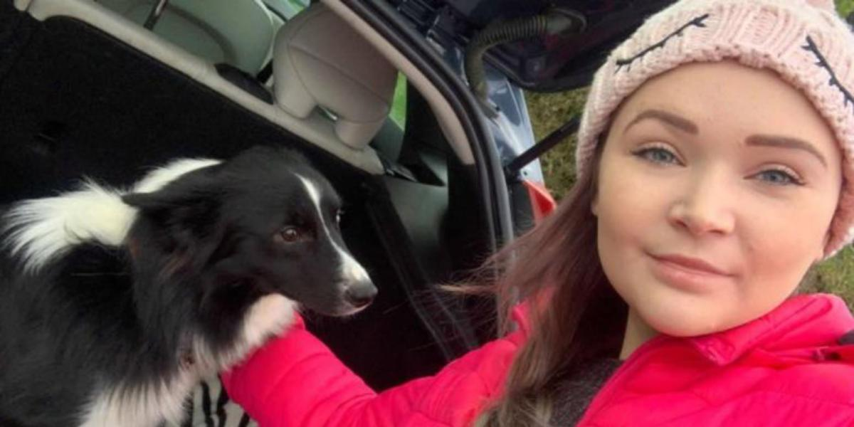 Border Collie with broken leg rescued by drone