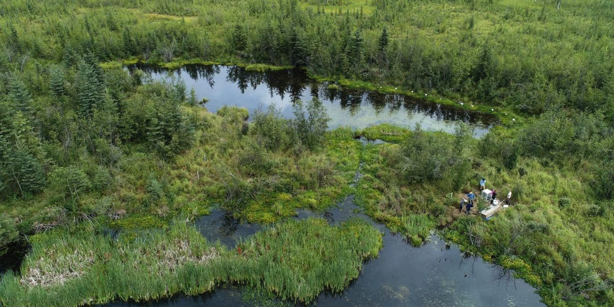 MSU research group uses drones to examine climate trends in Alaska