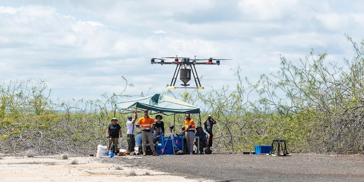 Poison-laden drones hunt invasive pests in New Zealand wilderness