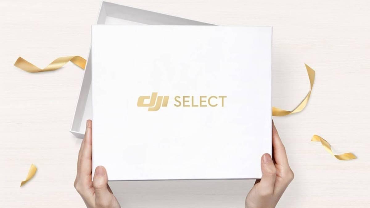 DJI Select Membership