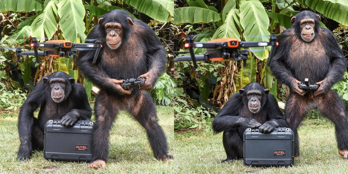 Apes fly flying drone