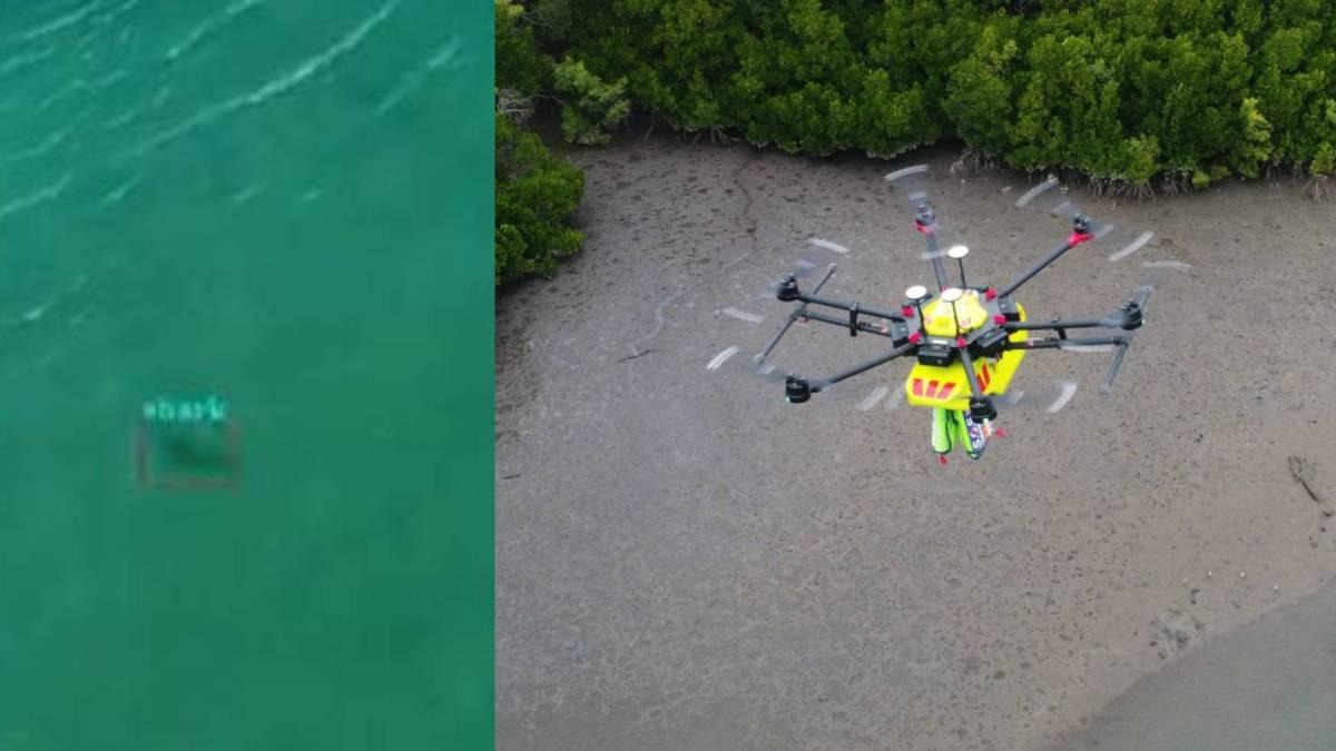 Little Ripper drone sharks