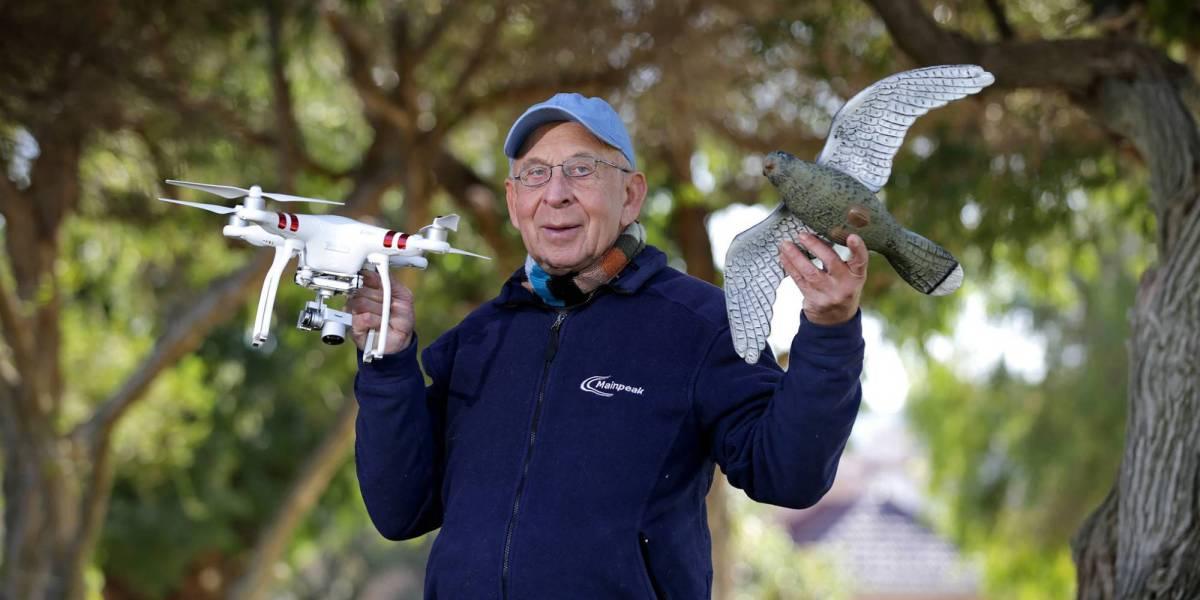 drones disguised birds prey