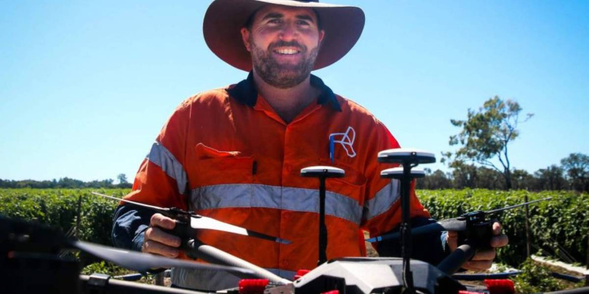 drones wasps Barrier Reef