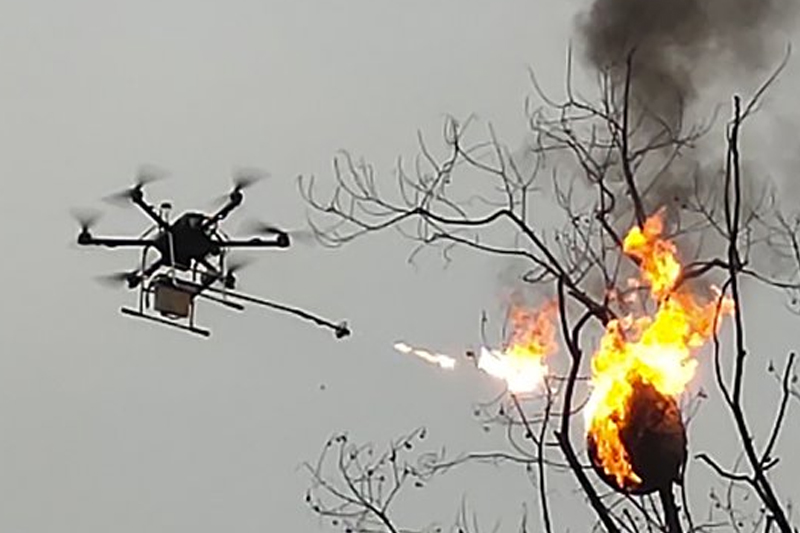 Flamethrowing drone torches hornets
