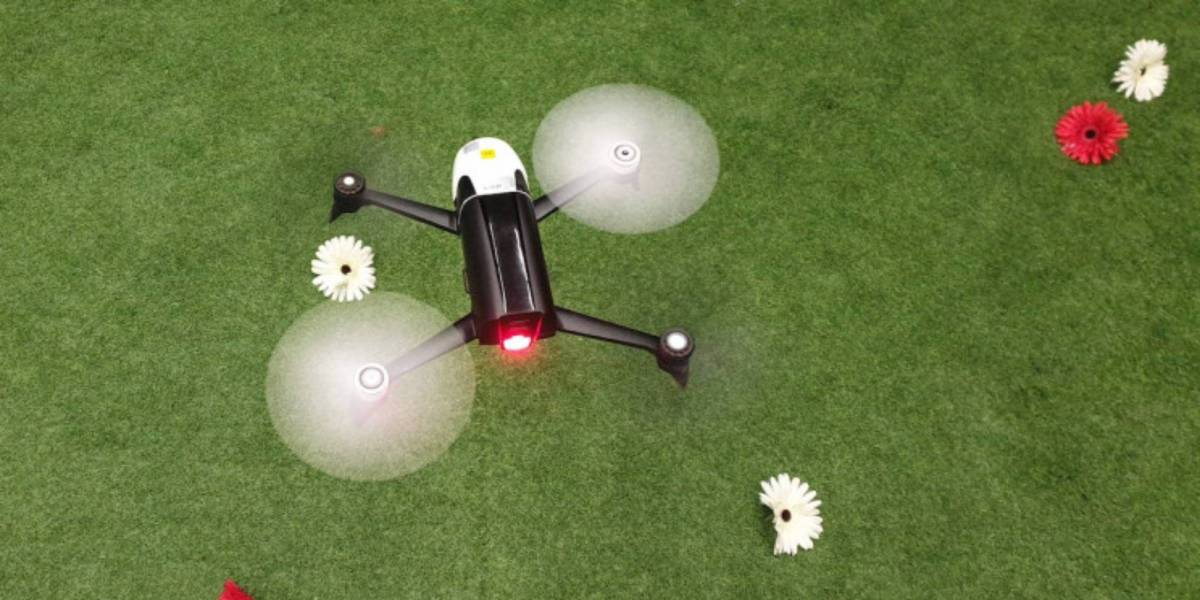drone insects flight tasks