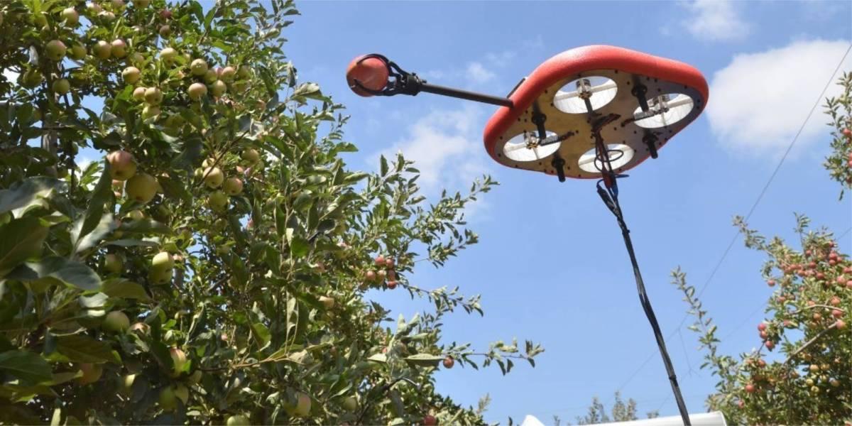 Tevel Technologies fruit-picking drones