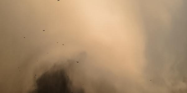 drone video dust cloud